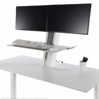 QuickStand Dual Monitor